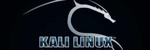 اموزش نصب سیستم عامل کالی لینوکس