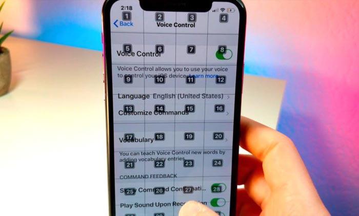 Voice Control در iOS 13