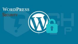 wordpress-plugin-security