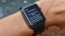 Turn Off Annoying Notifications on Apple Watch