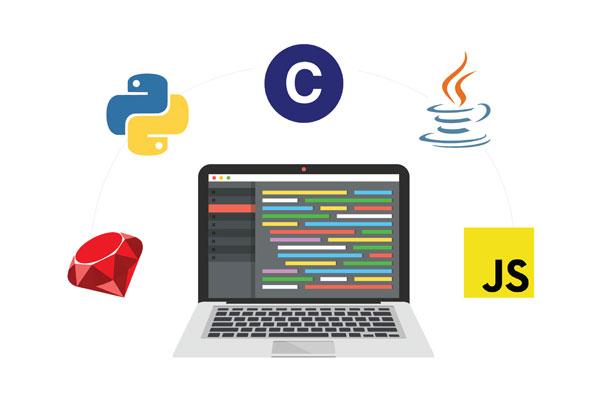 کدام سطح زبان برنامه نویسی را باید یاد بگیرید؟