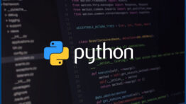check-Python-version