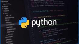check-Python-version