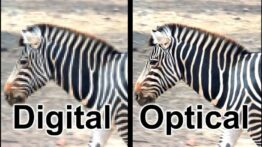 Difference-Between-Digital-and-Optical-Zoom