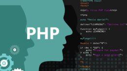 برترین زبانها و شرکت های برنامه نویسی تحت وب